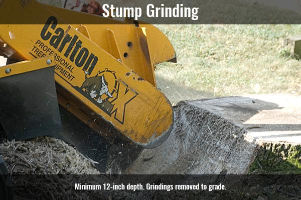 StumpGrinding